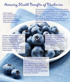 The Health Benefits of Blueberries