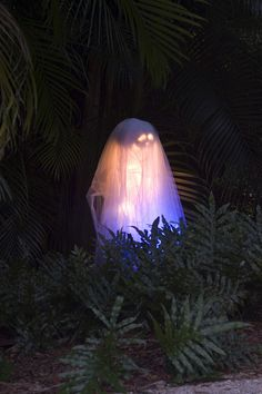 Ghost at dusk.... used a white pumpkin as the head, on a garden stake, covered with cheescloth dipped in rit white-out (to glow better) and ...