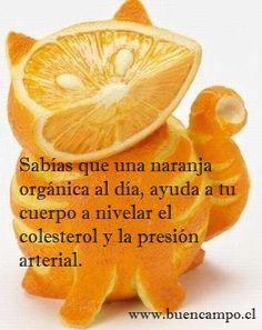 Beneficios de la Naranja 2 - Presentado Por Frutas y Verduras a Domicilio, Buencampo.cl | Flickr - Photo Sharing!