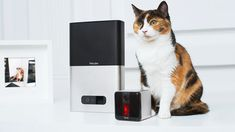 #design Petcube Bites  Petcube https://t.co/8c3G50AI1f #Crowdfunding #cat #crowdfunding #dog #industrialdesign https://t.co/aLAWExfZhc