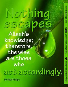 Nothing escapes Allah's knowledge; therefore the wise are those who acts accordingly. Islamic Teachings, Islamic Quotes, Islamic World, Islamic Art, Oh Allah, Beautiful Names Of Allah, All About Islam, Quran, Wise Words