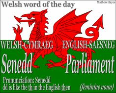 #Welsh word of the day: Senedd/ #Parliament