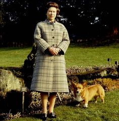As Queen Elizabeth II celebrates 60 years on the throne, we look back at her love affair with her favorite animal: the corgi. Her first, Susan, was given to her on her eighteenth birthday and since then, the Queen has owned four to five at a time.