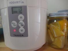 酵母の起こし方 ヨーグルトメーカーを使う
