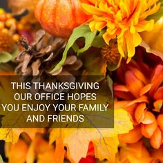 Have a bountiful Thanksgiving everyone!  #santaclaritachiropractor #santaclarita