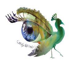 Peacock art into eye Peacock Images, Peacock Art, Watercolor Peacock, Watercolor Paintings, Watercolor Eyes, Eye Art, Illustration Art, Illustrations, Art Photography