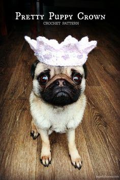 Pretty Puppy Crown Crochet Pattern