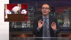 John Oliver Unveils Stock Footage of the Supreme Court as Animals With Fake Paws on 'Last Week Tonight'