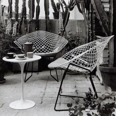 Harry Bertoia's Diamond chair, 1952, and Eero Saarinen's Tulip side table, 1956, both originally manufactured by Knoll International. / Arredativo