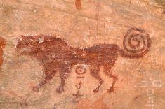 Oued Djaret, Algeria. Close-up of red predator (lion) facing left.
