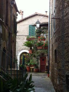 #Farnese #invasionifdigitali #invasionefarnese #tuscia