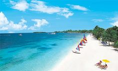 Tours from Grand Palladium Lucea Jamaica                                                                                                                                                                                 More