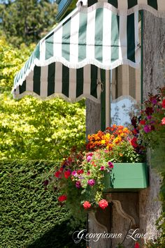 You have to love a crisp awning and a colorful window box. Window Box Flowers, Window Boxes, Flower Boxes, Window Awnings, Garden Windows, Backyard, Patio, Window Dressings, Outdoor Living