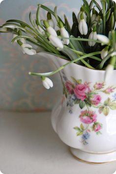 Toves Sammensurium--Spring Flowers