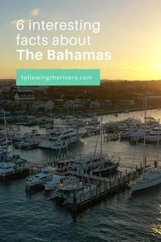 An island destination that offers more than sun, sea and sandy beaches, the Bahamas has a fascinating culture, delicious cuisine and one of the most interesting dialects I've come across. #caribbean #bahamastravel #bahamastrip #travel #caribbeantravel #traveltips #traveldestinations #travelideas Travel Photos, Travel Tips, Travel Videos, Travel Goals, Budget Travel, Canada Travel, Travel Usa, Globe Travel, Beach Vacation Spots