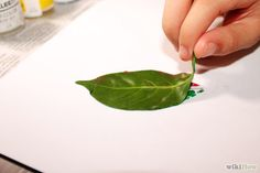 Make Leaf Prints Step 6.jpg
