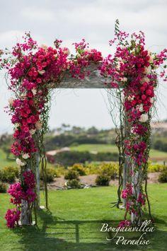 flower arch 5.jpg (1173×1768)