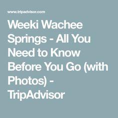 Weeki Wachee Springs - All You Need to Know Before You Go (with Photos) - TripAdvisor Weeki Wachee Florida, Florida Vacation, Spring Break, Need To Know, Trip Advisor, Photos, Pictures, Florida Holiday, Winter Vacations