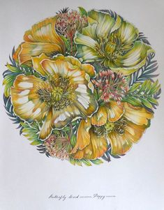 Tropical Flowers, Colored Pencils, Painting & Drawing, Mandala, Watercolor, Drawings, Sketch, Inspiration, Patterns
