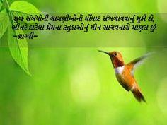 Gujarati quote by sraghvi Gujarati Shayri, Gujarati Quotes, Poems, Thoughts, Feelings, Poetry, Verses, Poem, Ideas