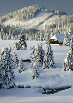 enantiodromija: Winter Wonderland by Kilian Schönberger / 500px  Visit and Follow www.joselito28.tumblr.com