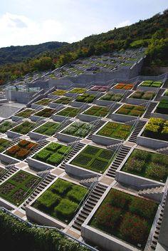 很莊觀~有一百個花圃 by LanceXiao Hyakudanen, or 100-level garden, designed by Tadao Ando Awaji Yumebutai, Japan (+)