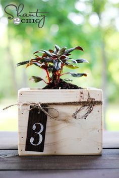 DIY wedding idea: Make mini planter boxes, and add a number for table centerpieces! Planter Box Centerpiece, Diy Planter Box, Diy Planters, Square Planters, Planter Ideas, Rustic Wedding Centerpieces, Diy Centerpieces, Scrap Wood Projects, Diy Projects