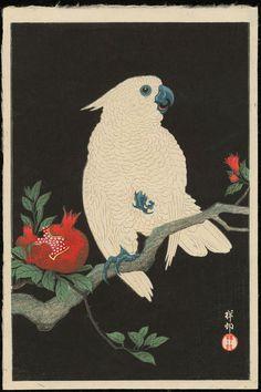 Shoson, Ohara (1877-1945)- Koson - Cockatoo and Pomegranate