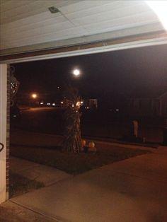 Beautiful fill moon against corn stalks