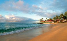 Can't wait to stay at the Sheraton Kauai for our wedding/honeymoon week in October!  Everything here looks amazing!!!