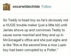 Harry Potter Puns, Harry Potter Feels, Harry Potter Ships, Harry Potter Marauders, Harry Potter Images, Harry Potter Tumblr, Harry Potter Fan Art, Harry Potter Universal, Harry Potter Characters