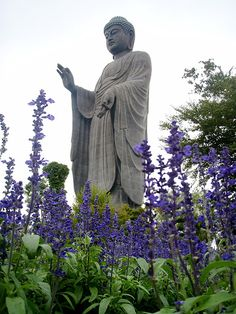 Ushiku Daibatsu    Standing a total of 120 meters tall, this depiction of Amitabha Buddha is still the tallest statue in the world according to the Guinness Book of Records. Ushiku Daibatsu was completed 1n 1995 and since then it has become one of the most popular landmarks in Japan.