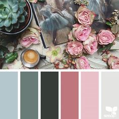 today's inspiration image for { color collage } is by @clangart ... thank you, Chantal, for another breathtaking #SeedsColor image share!