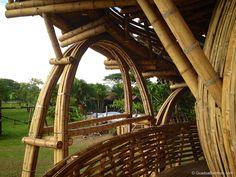bamboo-treehouse-16.jpg 1,000×750 pixels