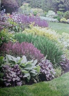 Courtyard Landscaping, Front Yard Landscaping, Wisconsin Landscaping Ideas, Inexpensive Landscaping, Landscaping Melbourne, Mulch Landscaping, Garden Yard Ideas, Lawn And Garden, Backyard Ideas