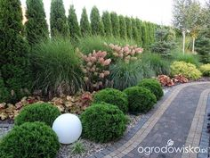 Backyard Landscaping Ideas for Privacy Fence and Screen - New ideas Sloped Garden, Garden Landscape Design, Back Gardens, Front Yard Landscaping, Shade Garden, Dream Garden, Garden Planning, Garden Inspiration, Beautiful Gardens