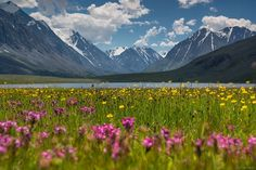 A Russian woman who moved to an unheated wooden hut in the mountains 20 years ago to hone her photography skills has finally released the culmination of her efforts - and it is stunning. Wooden Hut, Spring Pictures, Chinese Art, Land Scape, Countryside, Seasons, Mountains, City, Places