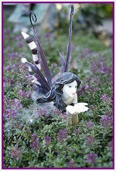 fairy lights in the garden images   can't wait until the garden fairies return to my garden.
