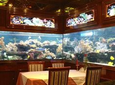 Amazing fish tanks in this very traditional Shanghai Restuarant ! We are literally surrounded by exotic fish and coral.