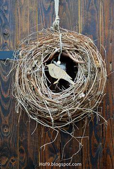 Hof 9: Kein Frühling ohne Vogelsang.....
