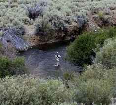 Fly fishing in Idaho at Copper Basin