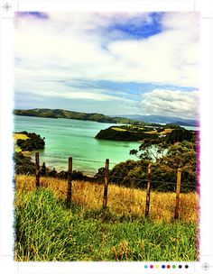 Waiheke Island is only 35 minutes on a ferry from Auckland, but from the moment you arrive you are in a different world. Waiheke Island, Auckland, Dream Vacations, In This World, New Zealand, Chur, The Incredibles, Luxury Accommodation, In This Moment