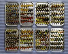 Great looking collection of fishing lures.  The display is amazing don't you agree?
