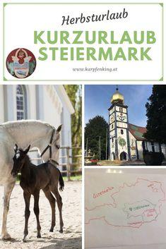 Lippizaner, Austria, Travel, Animals, Coach Tours, Ski, Viajes, Animales, Animaux
