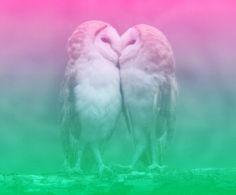 もうすぐXmas✨💞 プロポーズには〝盛って恋💘〟の シチュエーションです❣️ 結婚が決まったら、コチラをチェック してみましょう💖✨💓 ➡︎➡︎➡︎ http://s.ameblo.jp/bienfukuoka/entry-12146727617.html  #sns #婚活 #結婚 #プロポーズ #ブライダル #love #cute #YOLO #instagood  #メイク #ブログ #アメブロ  http://s.ameblo.jp/bienfukuoka/entry-12146727617.html