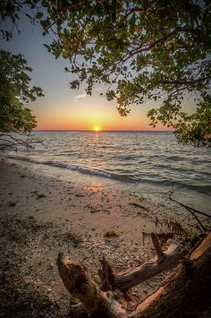 Beautiful Places To Travel, Beautiful World, Scenery Background, Scenery Pictures, Country Landscaping, Beautiful Sunrise, Beach Scenes, Natural Wonders, Amazing Nature