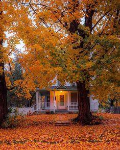 Autumn Walks, Autumn Cozy, Autumn Feeling, Autumn Scenery, Autumn Aesthetic, Best Seasons, Fall Pictures, Hello Autumn, Autumn Inspiration