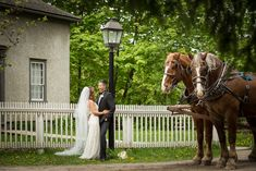 R+A at Black Creek - love when couples pose with our Horse & Carriage!