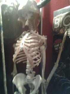 My skeleton I call him robert