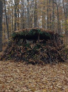 Cool ground blind